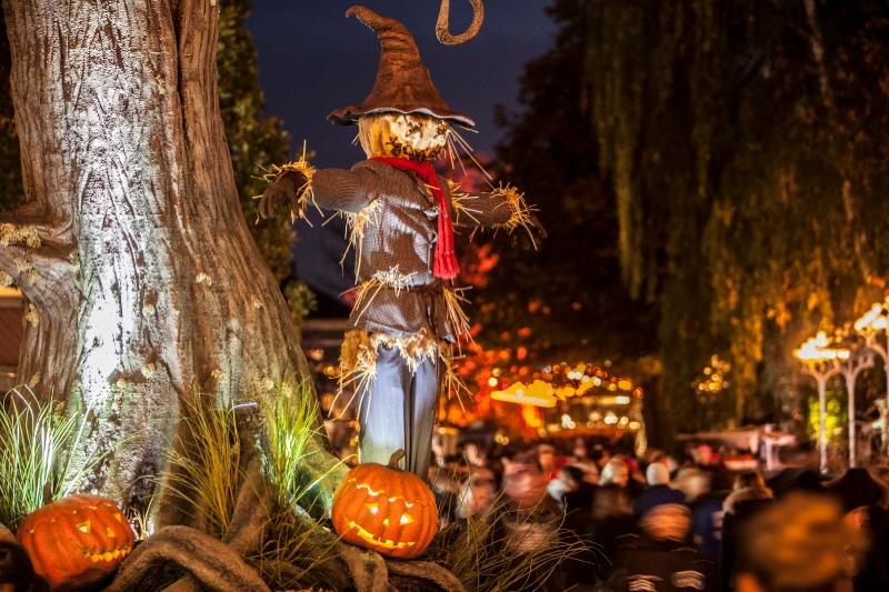 kopia-av-halloween_151124_scarecrow_3_5